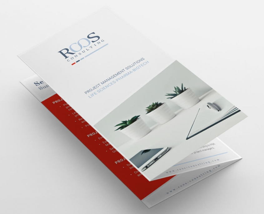 ROOS Consulting Flyer