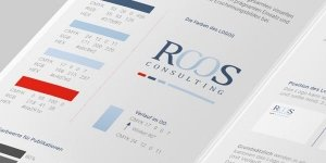 roos consulting